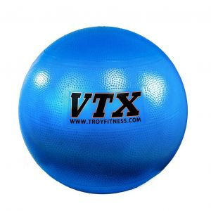 VTX Stability Ball